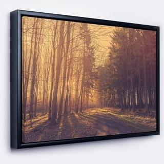 Designart 'Pine Tree Forest by Road' Landscape Photo Framed Canvas Art Print