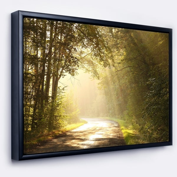 Designart 'Bright Sunlight in Fall Forest' Landscape Photo Framed Canvas Art Print