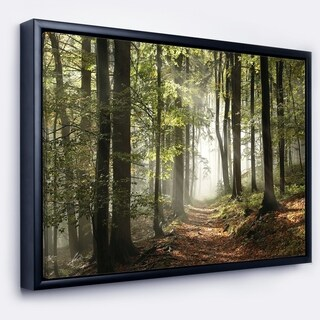 Designart 'Green Fall Forest with Sun Rays' Landscape Photography Framed Canvas Print