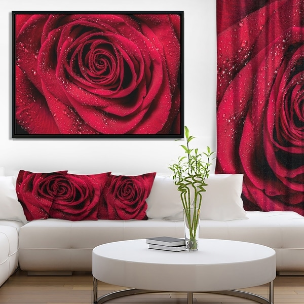Designart 'Red Rose Petals with Rain Droplets' Floral Art Framed Canvas Print
