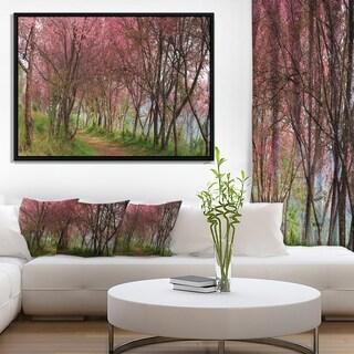 Designart 'Sakura Pink Flowers in Thailand' Landscape Framed Canvas Art Print