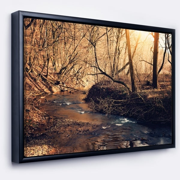 Designart 'Brown Creek in National Park' Modern Forest Framed Canvas Wall Art
