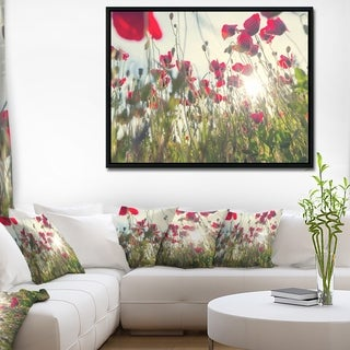 Designart 'Poppy Flowers on Summer Meadow' Floral Framed Canvas Art Print
