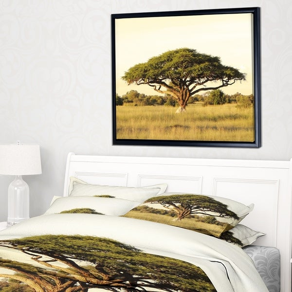 Designart 'Acacia Tree on African Plain' Oversized African Landscape Framed Canvas Art