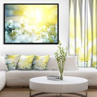 Designart 'Beautiful White Flowers At Sunrise' Large Flower Framed Canvas Wall Art