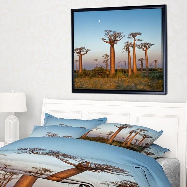 Designart 'Field of Boababs under Clam Sky' Oversized African Landscape Framed Canvas Art