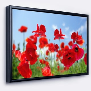 Designart 'Close Up of Amazing Poppy Flowers' Floral Framed Canvas Art Print
