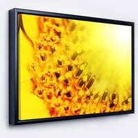 Designart 'Bright Yellow Sunflower Close Up' Floral Framed Canvas Art Print