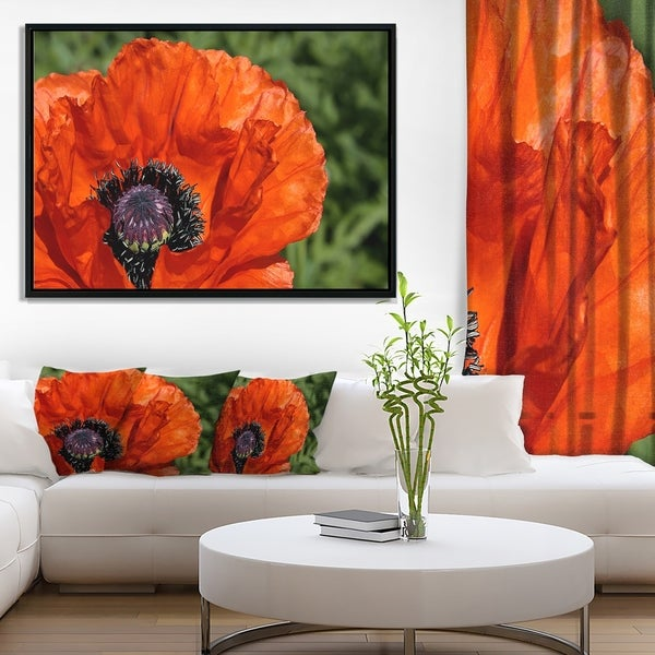 Designart 'Close Up View of Red Poppy Flower' Floral Framed Canvas Art Print