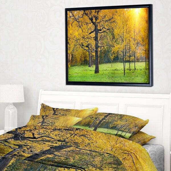 Designart 'Sunny Park with Oak Panorama' Large Landscape Framed Canvas Art