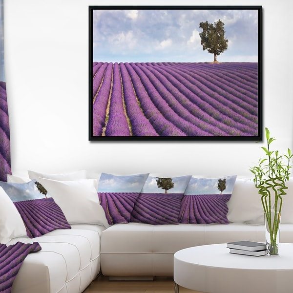 Designart 'Lone Tree in Provence Lavender Field' Landscape Framed Canvas Wall Art