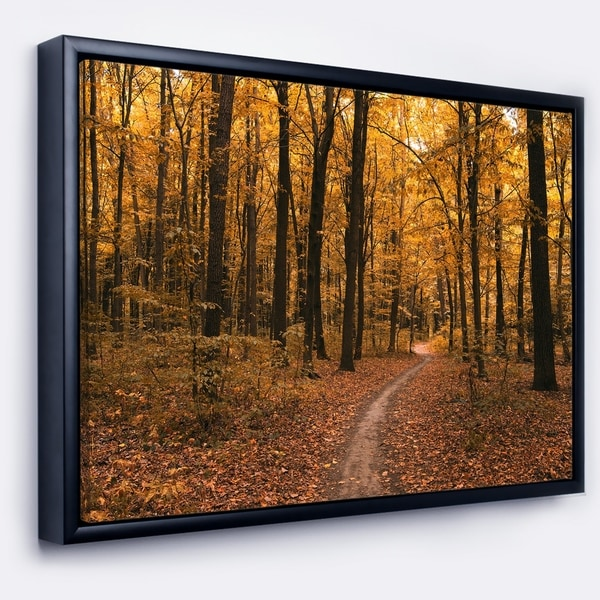 Designart 'Path in the Yellow Fall Forest' Modern Forest Framed Canvas Art