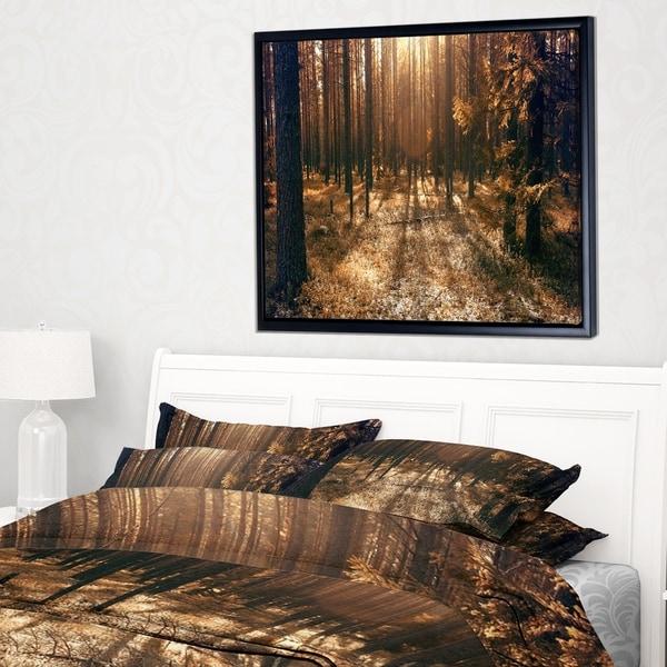 Designart 'Dark First Snow Forest Photo' Modern Forest Framed Canvas Art