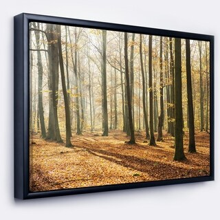 Designart 'Bright Autumn Day in Thick Forest' Modern Forest Framed Canvas Art