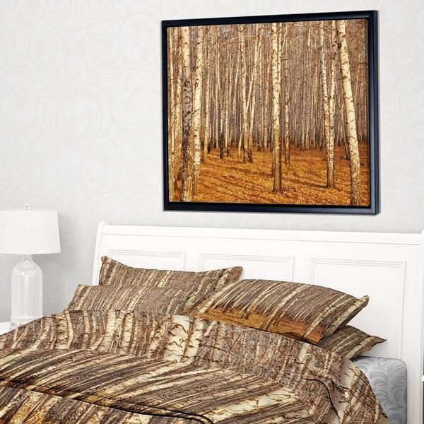 Designart 'Dense Birch Forest in the Fall' Forest Framed Canvas Art Print