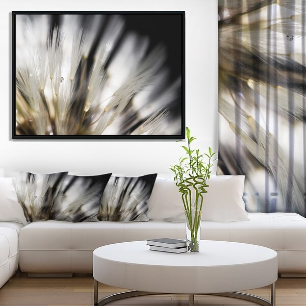 Designart 'Dandelion Close up with Dewdrops' Flowers Framed Canvas Wall Artwork