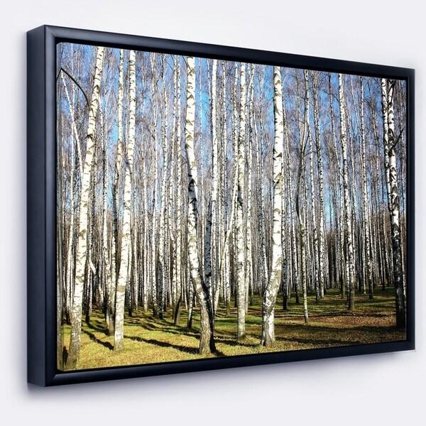 Designart 'Sunny Autumn Birch Grove' Modern Forest Framed Canvas Art