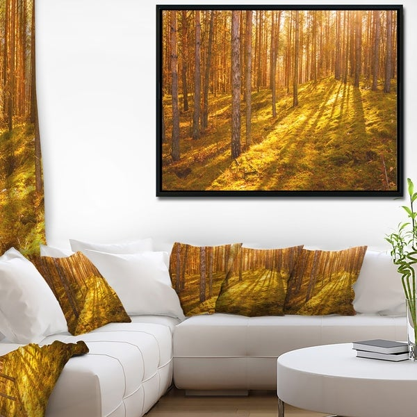 Designart 'Beautiful Sunrays in Thick Forest' Modern Forest Framed Canvas Art
