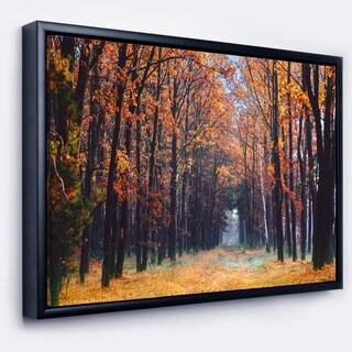 Designart 'Alley in the Dense Autumn Forest' Forest Framed Canvas Art Print