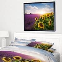 Designart 'Lavender and Sunflower Fields' Floral Framed Canvas Art Print