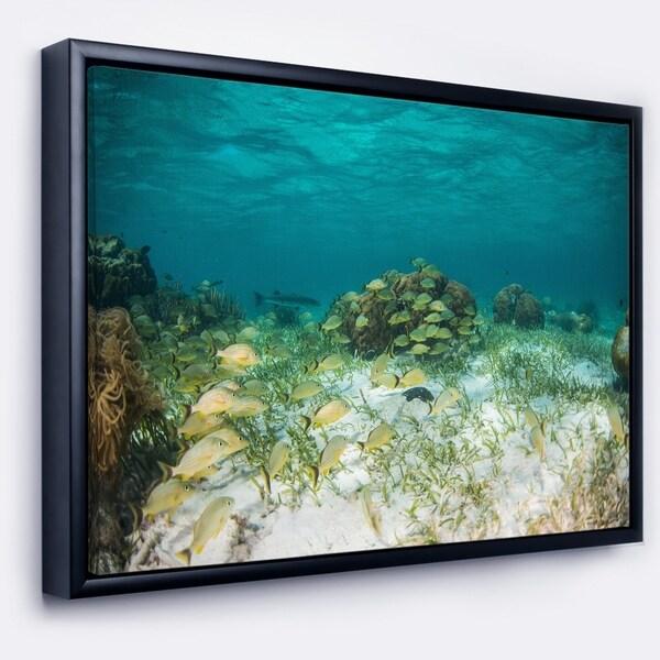 Designart 'School of Grunts with Baracuda' Seashore Framed Canvas Art Print