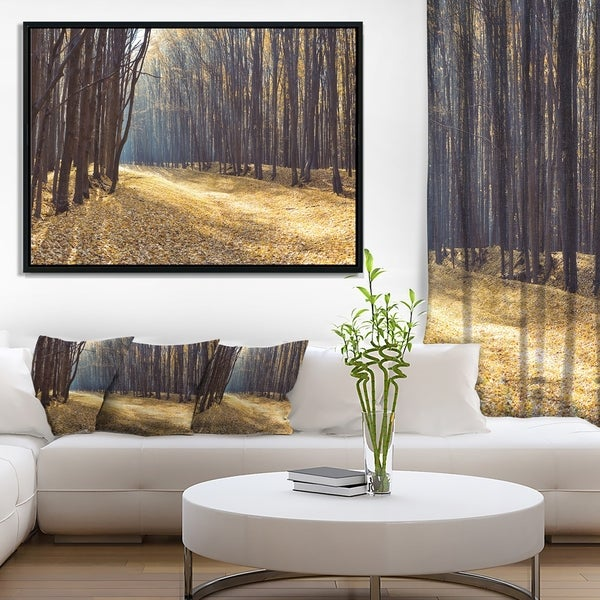 Designart 'Path in the Fall Forest Panorama' Forest Framed Canvas Art Print