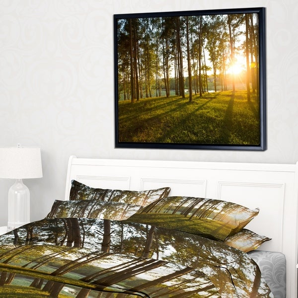 Designart 'Bright Sunlight in Dense Forest' Large Landscape Framed Canvas Art