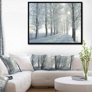 Designart 'Winter Trees Backlit by Morning Sun' Large Forest Framed Canvas Art Print