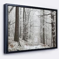 Designart 'Forest Trail on Winter Morning' Large Forest Framed Canvas Art Print