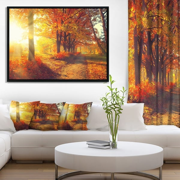 Designart 'Autumnal Trees in Sunrays' Large Landscape Framed Canvas Art Print