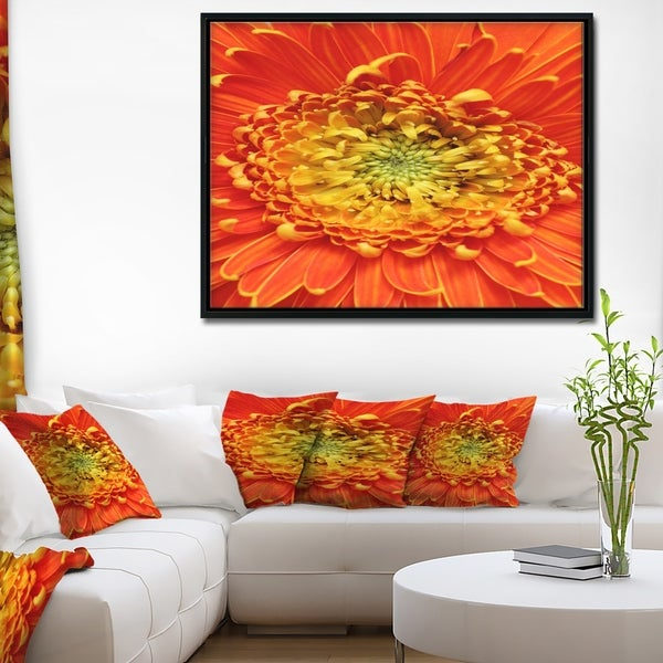 Designart 'Beautiful Gerbera Flower In Brig' Floral Framed Canvas Art Print