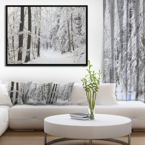 Designart 'Dense Winter Forest and Lane' Large Forest Framed Canvas Art Print