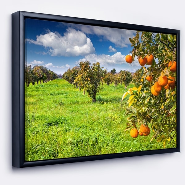 Designart 'Bright Green Grass in Orange Garden' Large Landscape Framed Canvas Art Print