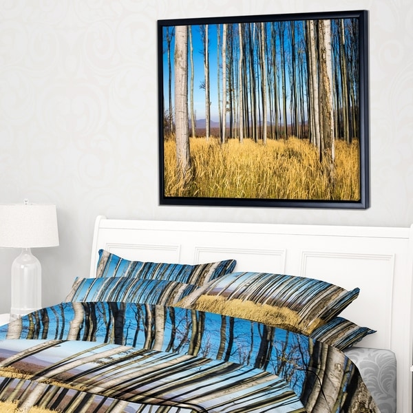 Designart 'Clear Sky and Bush in Thick Forest' Modern Forest Framed Canvas Art