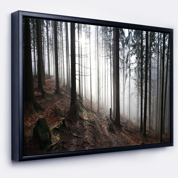 Designart 'Misty Forest Morning Panorama' Landscape Framed Canvas Art Print