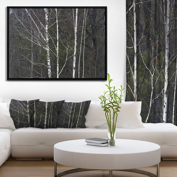 Designart 'Black and White Birch Forest' Abstract Wall Art Framed Canvas