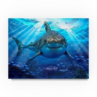 Howard Robinson 'Stalking Shark' Canvas Art