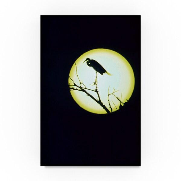 shop american eyes egret silhouette canvas art free shipping