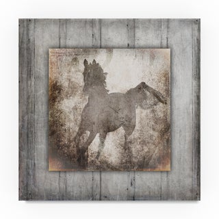 Lightboxjournal 'Gypsy Horse Center Frame.' Canvas Art