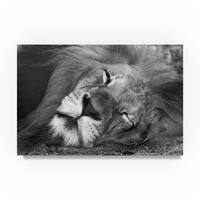 Robert Michaud 'Lion Sleeping' Canvas Art