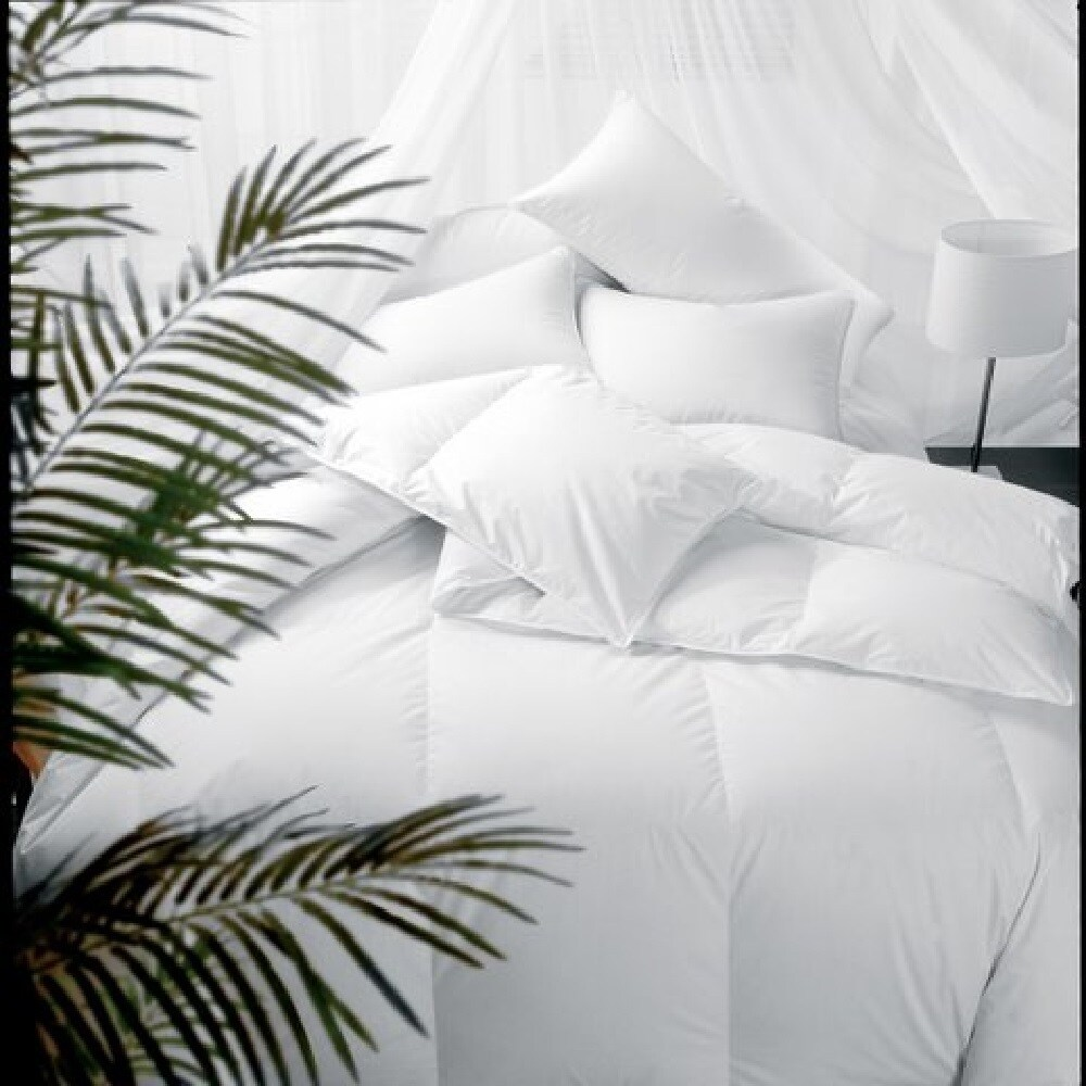 1221 Bedding Comforter Sets on DailyMail