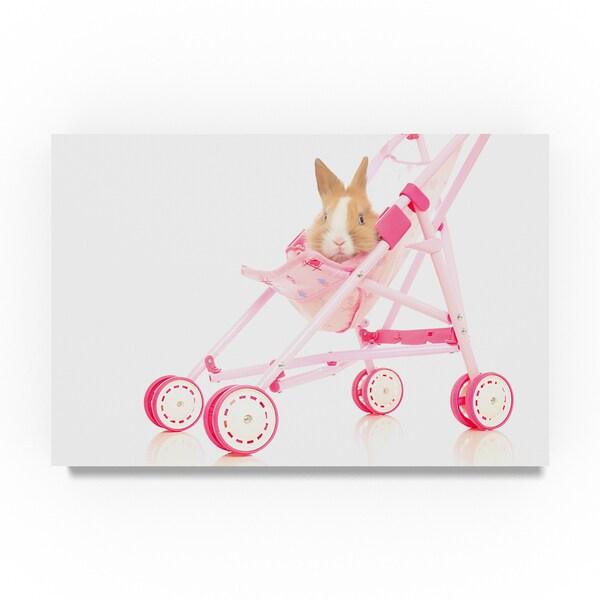 Andrea Mascitti Puppies 'Bunny In Stroller' Canvas Art 32049336