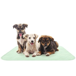 Puppy Training Reusable Pads, 2 Pack