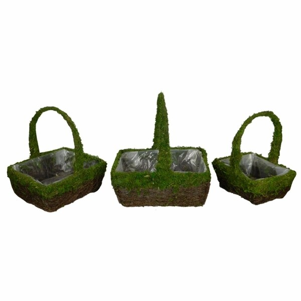 Nature Inspired 3Piece Moss And Salim Basket Set With Handle, Green And Brown