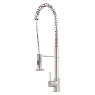 NKF-H07BN Dual Action Commercial Kitchen Faucet in Brushed Nickel