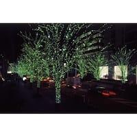 Fairy Lights - Green Light
