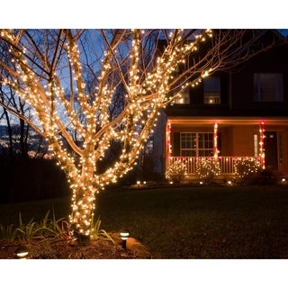 Link to Fairy Lights - Warm Light Similar Items in Christmas Decorations