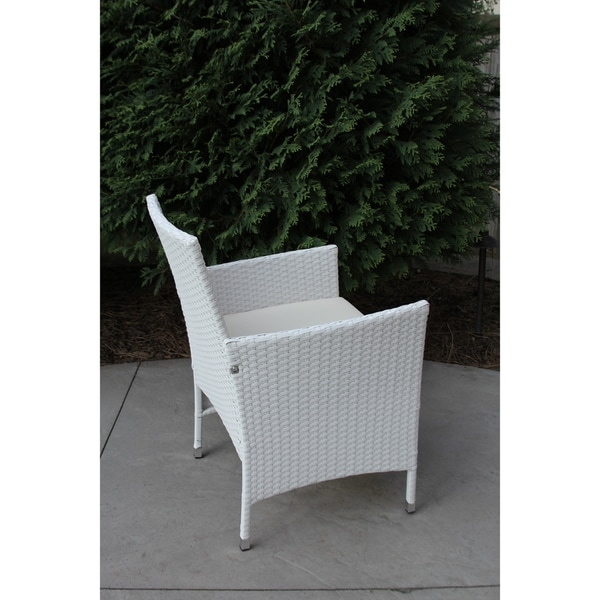 White Wicker Dining Chairs: Shop DISCONTINUED Single Outdoor Wrapped White Wicker