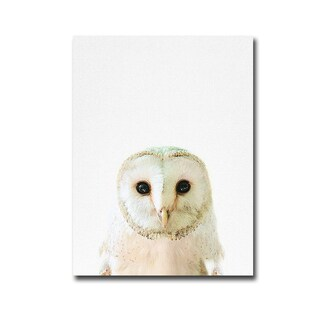 Owl by Tai Prints Gallery-Wrapped Canvas Giclee Art