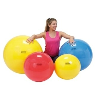PhysioGymnic Molded Vinyl Inflatable Ball